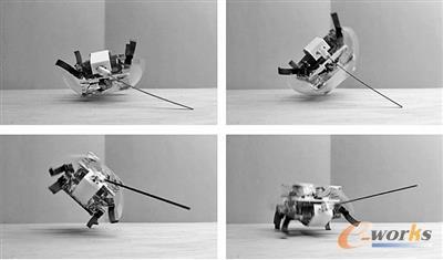 蟑螂机器人