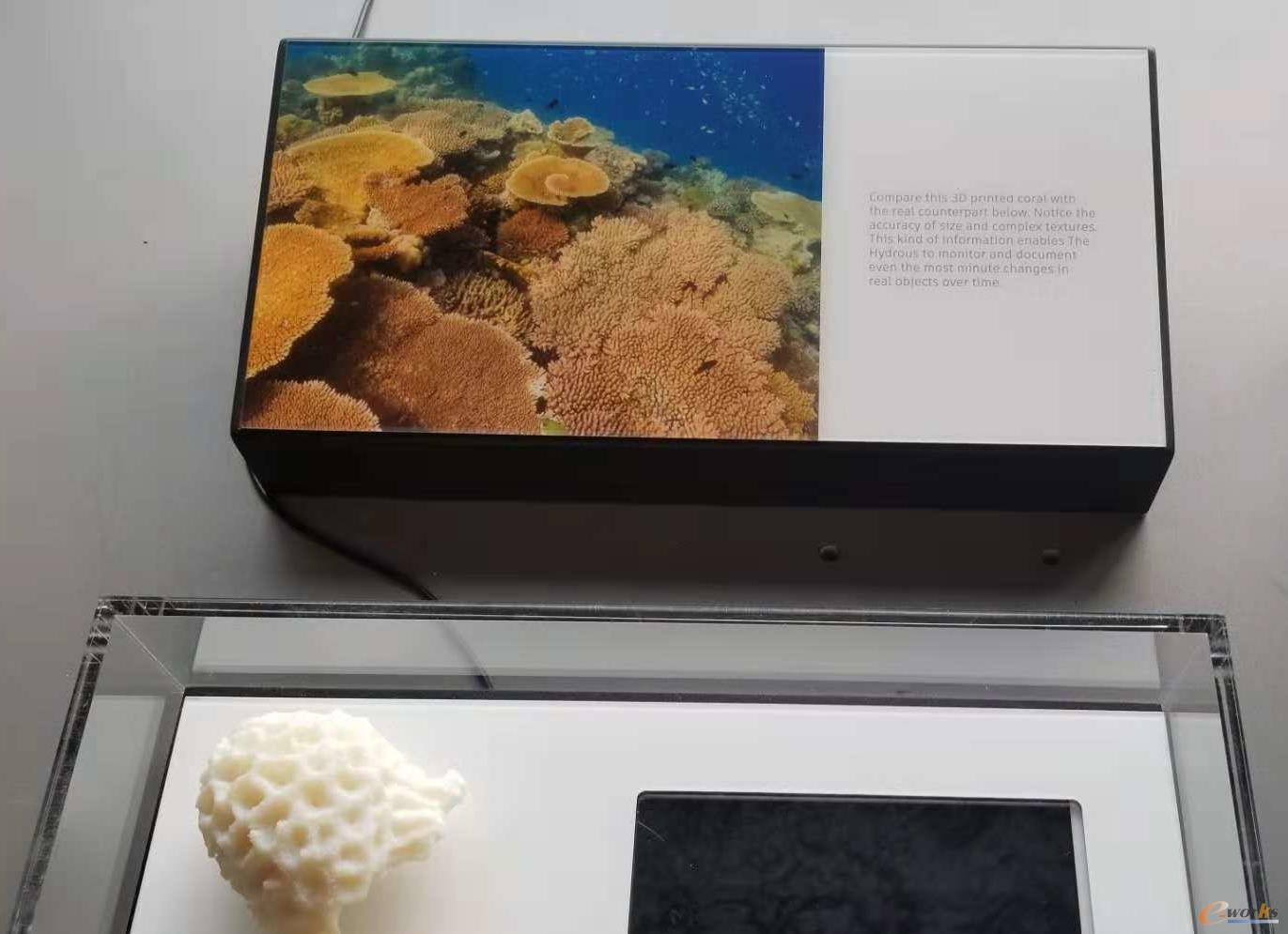 三维打印的珊瑚礁