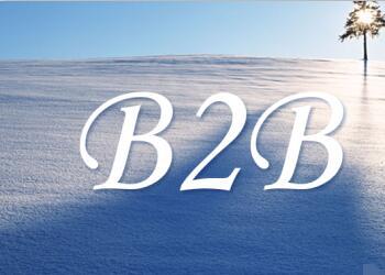 B2B跨境电商新政,利好背后存变数