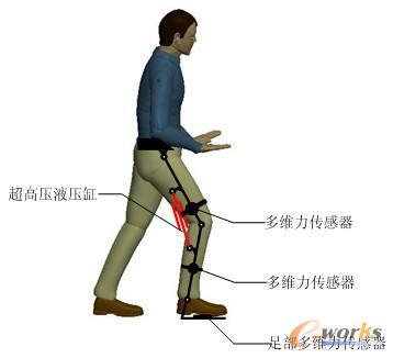 用于测量人体大,小腿与机器人外骨骼之间的接触力,该接触力包括沿人体