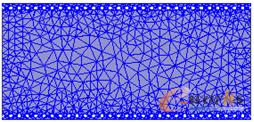 图3 基片集成波导的网格划分