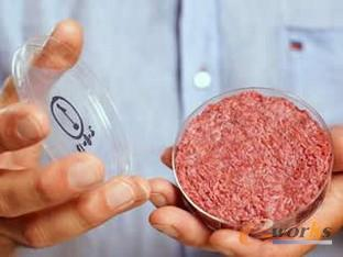 3D打印肉