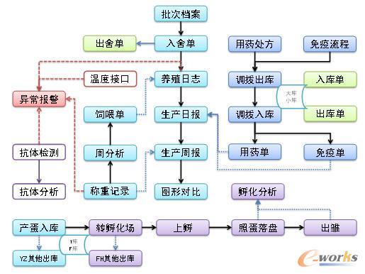 信息化建设的步骤