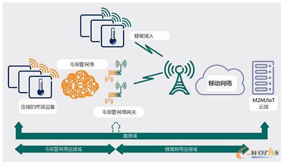 图1 毛细管网络架构图