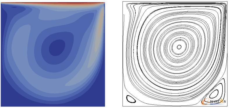 Lid-driven cavity问题:速度场及流线图,Re=1000