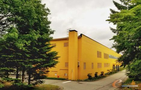 明黄色的厂房在树木中格外显眼