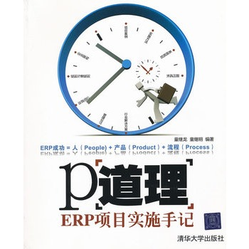 P道理――ERP项目实施手记