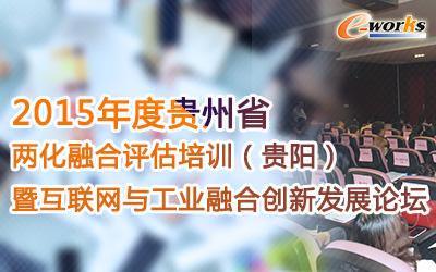 2015年度贵州省两化融合评估培训(贵阳)暨互联网与工业融合创新发展论坛